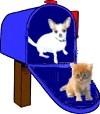 My mailbox